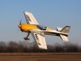Avion E-flite Extra 300 BNF Basic avec AS3X et Safe env.1.30m